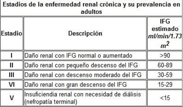 Resultado de imagen para filtracion glomerular normal