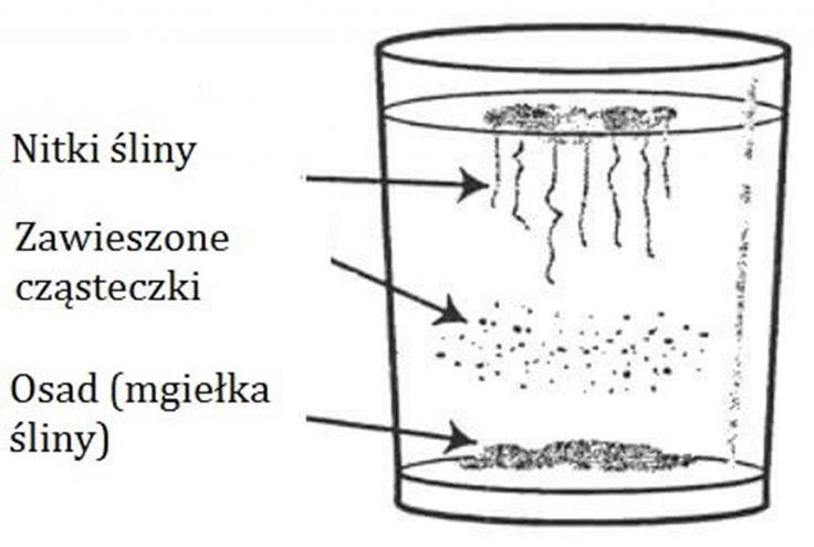 Drożdżaki ― Domowy test i sposoby leczenia