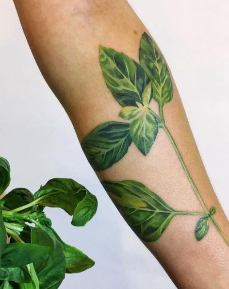 Green Basil Tattoo
