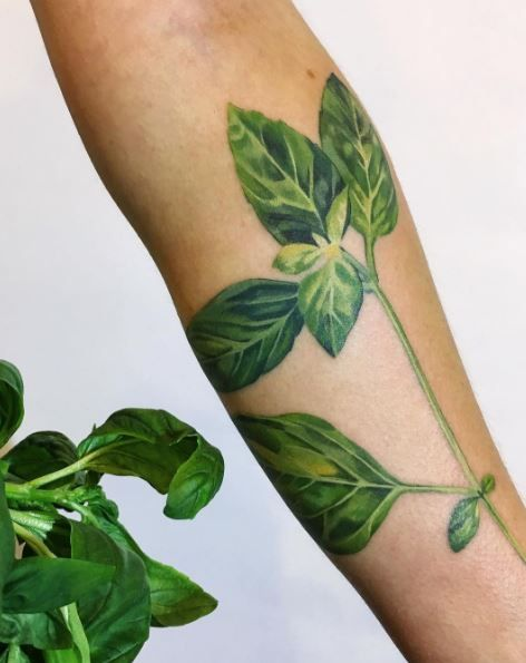 Green Basil Tattoo