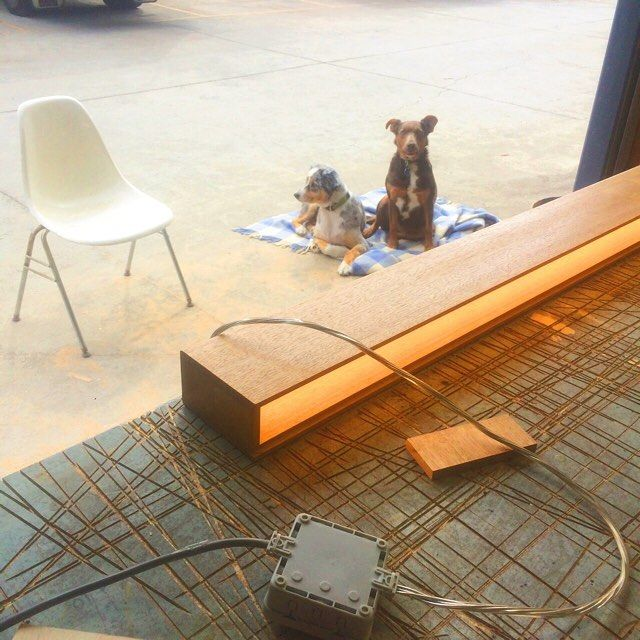 Testing our timber clad linear light fitting.  #wearehelping #whatareyoudoing #light #lighting #linearlight #lightup #timberlight #tassieandnellie #itsadogslife #workshop #madeinyarraville #yarraville #nogoatforjack