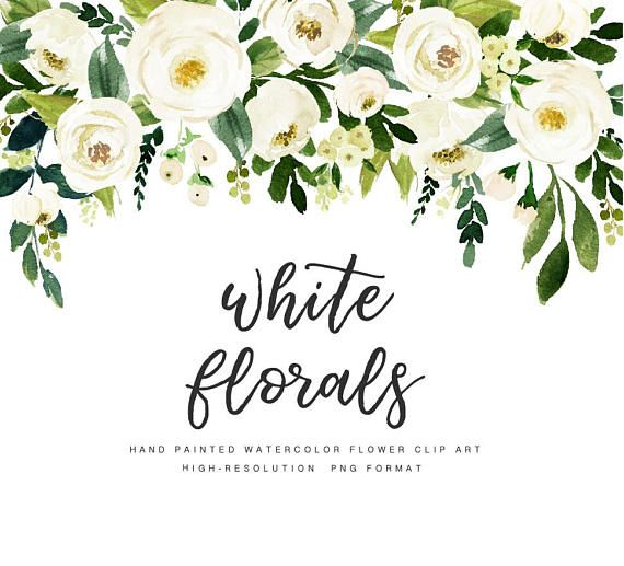 Watercolor floral Clip Art-White Flower/Small Set ...