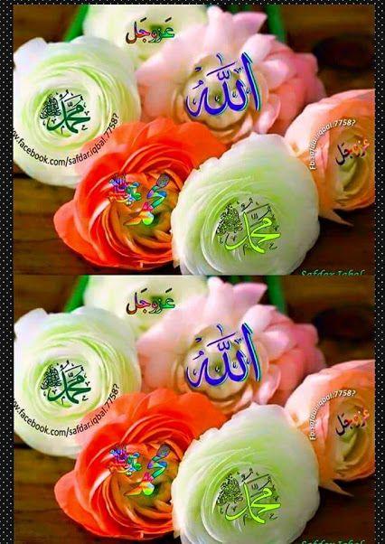 Love of Allah and his Prophet (Sallallahu Alaihiwasallam).
