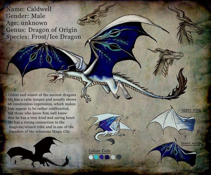 "Dragon ID card / Drago, carta d'identità - ""Commission: Caldwell Sheet"", Art by Culpeo-Fox on deviantART"