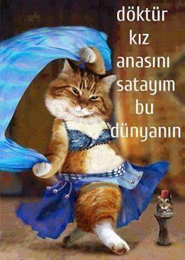 Yandan yandan :))))
