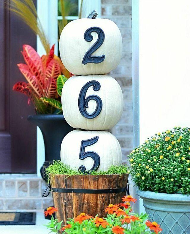 weiße Kürbisse Haus Nummer Haus Eingang