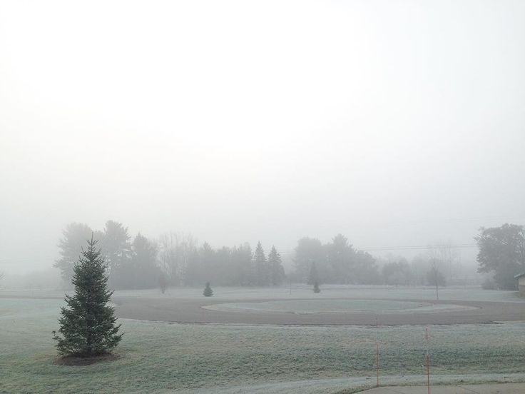 . 朝もや と 霜 が美しい 日曜日の朝 . 現在の気温 マイナス1℃ . 11月末の ウィスコンシン にしては マイルド . . . Morning fog + Jack Frost = Beautiful Sunday morning ✨ . . . . . #暮らし #日々 #朝もや #霜 #朝 #自然 #空 #いまそら #日曜日 #冬 #11月 #sundaymorning #sky #morningfog #frost #morningslikethese #sunday #weekendvibes #dimanche #nature #naturelovers #seekthesimplicity #pursuepretty #theartofslowliving #motherhood #simpleliving #wisconsin #november #winter