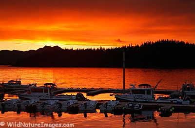 Ketchikan, Alaska-the sunsets in Alaska are beautiful every night!