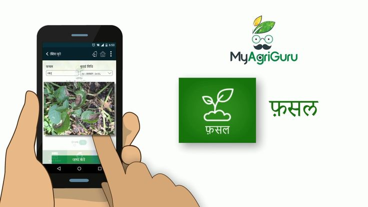 MyAgriGuru | Best Agriculture App | Farmer Community MyAgriGuru is India most trusted app in agriculture which has been specifically designed for Indian farmers. It aims to assist them in their journey towards better and innovative farming while boosting their incomes. This kheti badi app will make sure every farmer in India has access to the latest agricultural technology and techniques so that they are able to raise healthy crops and in turn contribute to a healthy living of the entire…