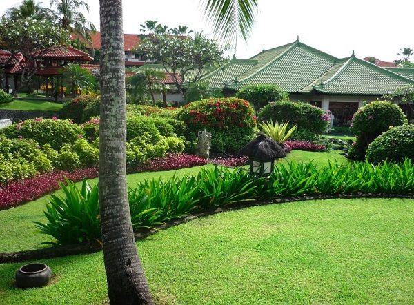 Creative tropical landscaping ideas garden pinterest for Creative design landscaping