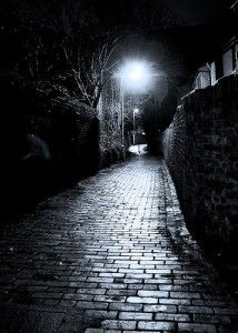 A dream-like trip for Alex through the back alleys of St. Petersburg with Fyodor as his guide. http://www.amazon.com/Night-Crossing-Third-Trilogy-Remembrance-ebook/dp/B00Q3Y57SW/