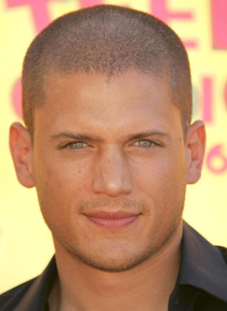 Classify Wentworth Miller. his father is of African-American, Jamaican, English, German, Jewish and Cherokee descent, and his mother is of Russian, French, ...
