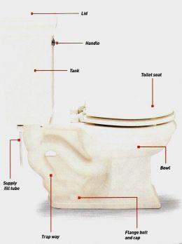 64 best plumbing tips tricks images on pinterest plumbing home plumbing repair tips do it yourself solutioingenieria Images