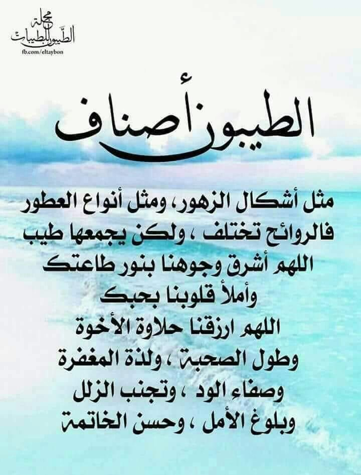 Pin By Chamsdine Chams On ادعية Good Morning Arabic Profile Picture For Girls Profile Picture