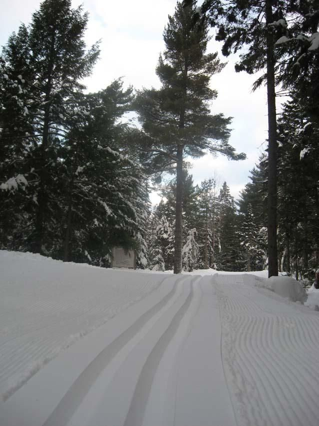 Martock Nordick Trails - amazing conditions this winter! www.richardpayne - Your Halifax Real Estate and Relocation Expert
