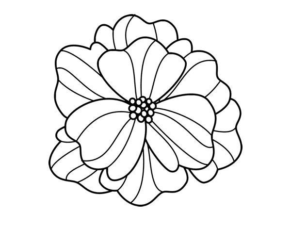 Cool Mandala Para Colorear Cool Mandalas Para Colorear De: Flor Para Calcar. Dibujo De Mandala De Ptalos Para