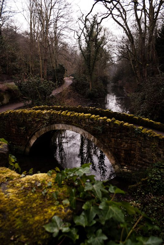 Jesmond Dene, a secenic park in Newcastle upon Tyne. Many a walk taken here growing up.