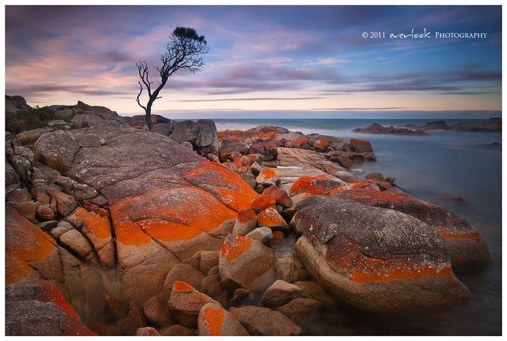 Binalong Bay, Tasmania, Australia
