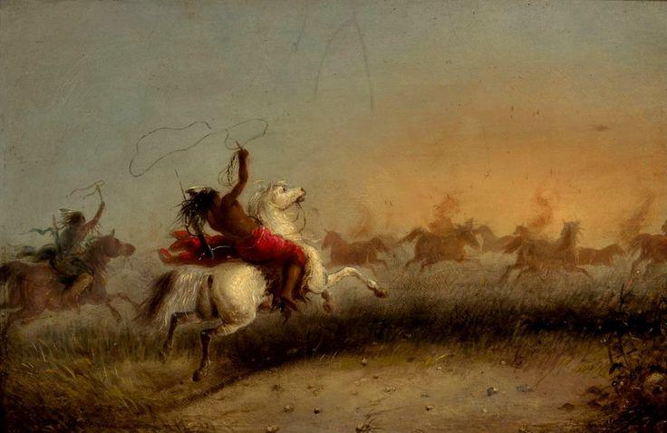 Cattura di Cavalli Selvaggi da Parte degli Indiani 1840's