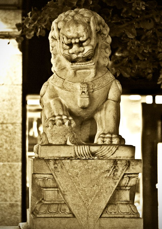 chinese lion statue meaning 154 best images about foo dogs and shishi lions on 10555