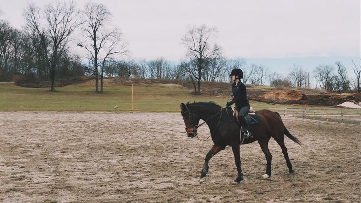 I never post photos of me riding because I have the worst confidence in the world but, today was a good day.