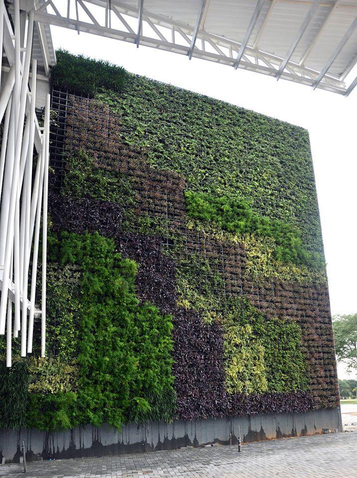 Design Tropical: uma revolução em Paisagismo – Design Tropical é uma empresa especializada em Paisagismo, especialmente em Jardim Vertical e Telhado Verde