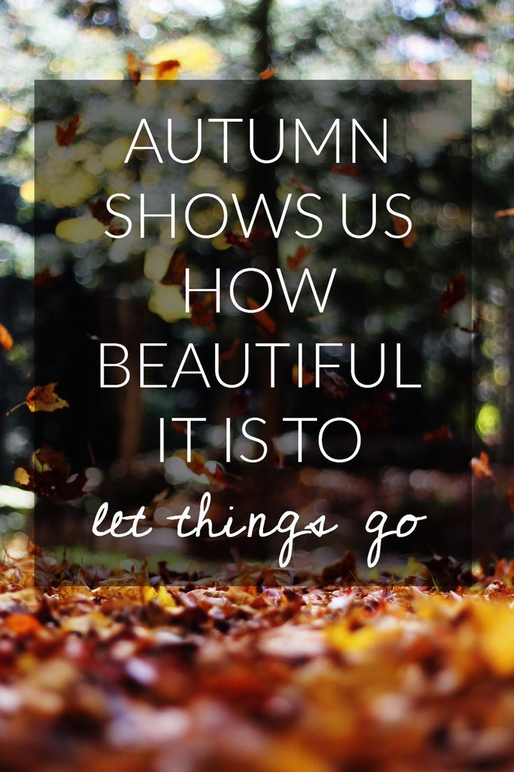 Autumn shows us how beautiful it is to let things go.  Seasons.