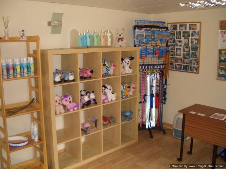 103 best dog grooming setup images on pinterest dog accessories pictures of dog grooming shops collars and cuts dog grooming dog grooming in edinburgh solutioingenieria Choice Image