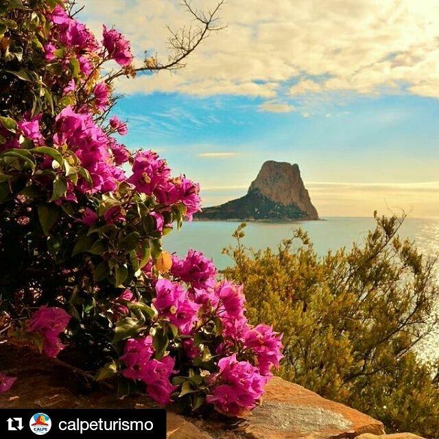 ¿Quieres disfrutar de unas vistas así? ¡Ven a #Calpe y alójate en nuestro #resort! No te arrepentirás ⛵  ☀ #Primavera  #ColinaHomeResort #ColinaCalpe #Calpe #Resort #ColinaResort #ResortCalpe #Resort #CalpeTurismo