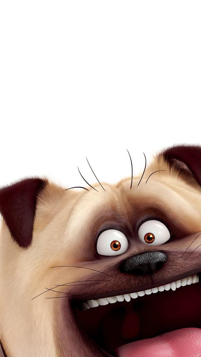 Funny wallpaper iPhone
