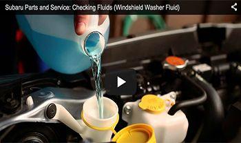 Checking Windshield Washer Fluid | Tacoma Subaru | New Subaru dealership in Tacoma, WA 98409