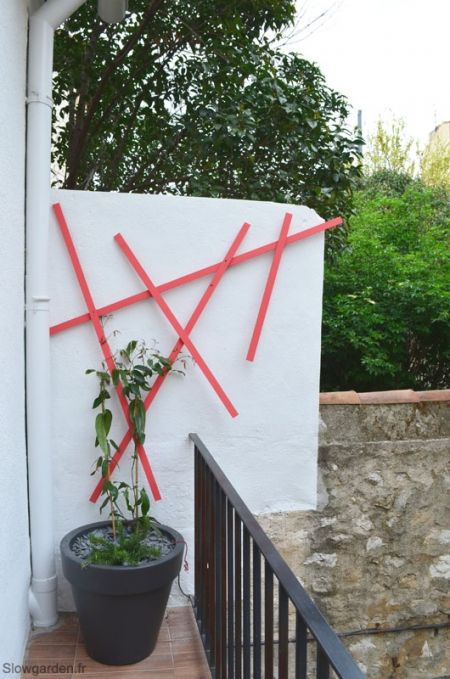 by lejardindeclaire,slowgarden,terrasse marseille,jardin,murs de…