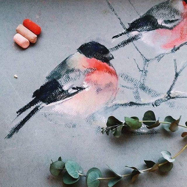 Прикупила себе серо-зеленый рембрандта, развлекаюсь  Вообще, сложных серых всегда не хватает! И напоминаю, что прошлое задание для #pastel_together - это зимние птицы с применением гуаши или темперы в качестве снега! Под тегом уже целая зимняя коллекция ❄ А на днях ждите новое задание!!  #снегирь #зима #скороновыйгод #пастель #пастельнаятехника #иллюстрация #скетч