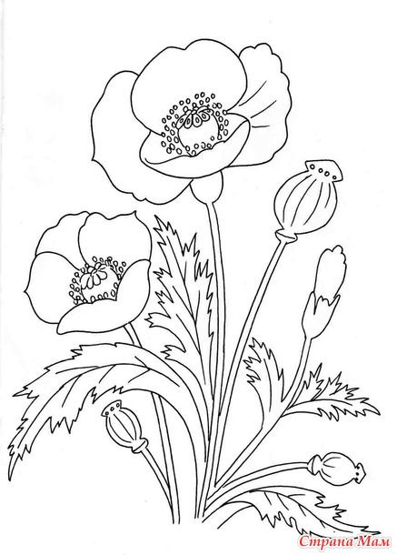 6850 best Adult and Children's Coloring Pages images on