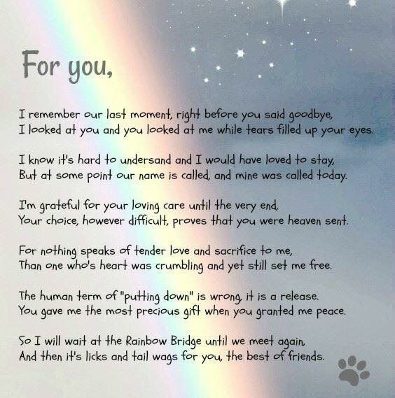 Pin By Lynne Austin On Pups Dog Poems Pet Grief Pet Poems