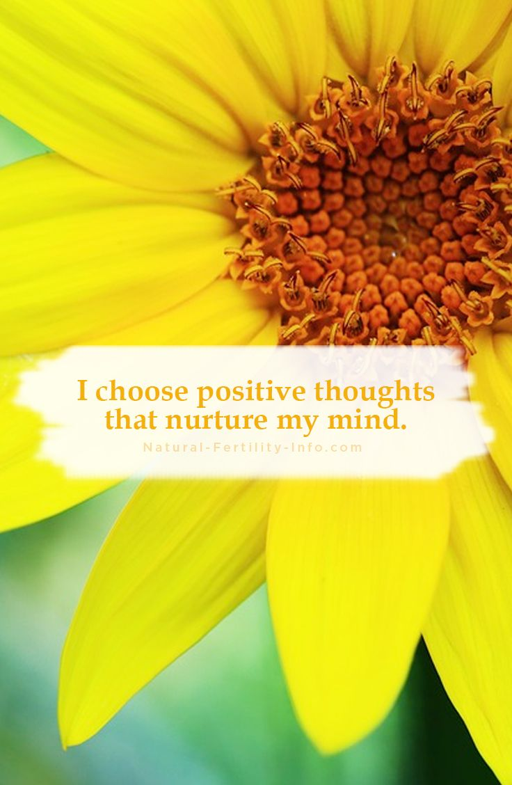 I choose positive thoughts that nurture my mind. #affirmations #positiveaffirmations #inspirationalquotes #motivationalquotes #fertilityinspirations #quoteoftheday #inspiration #motivation #quotes #lifequotes #NaturalFertilityInfo #NaturalFertilityShop