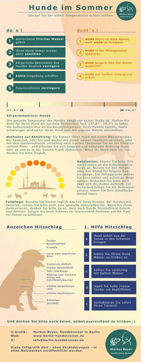 Es wird wärmer. Hier zur Erinnerung unsere Übersicht zum Umgang mit Hunden bei hohen Temperaturen. http://berlin-hundetrainer.de/hunde-verstehen/hunde-im-sommer/