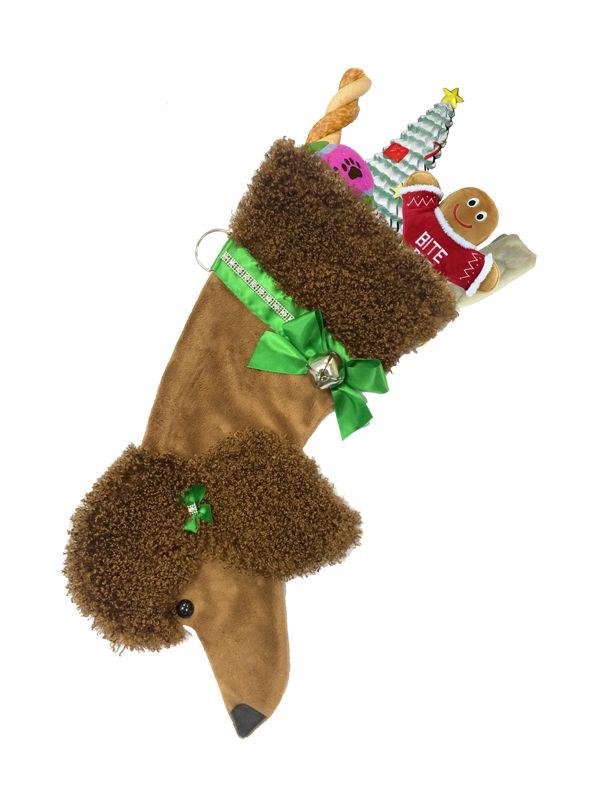 Poodle - brown