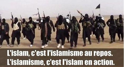 « Peut-on distinguer l'islam de l'islamisme ? Cette question n'a aucun sens.  Depuis sa fondation, l'islam est politique.  Mahomet, le fondateur de l'islam, a conquis le pouvoir politique par les armes. La violence liée à la conquête et la domination des peuples, est consubstantielle à l'islam.