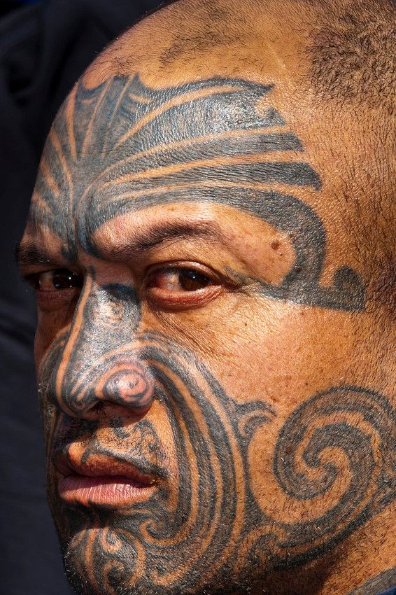 Maori man with ta moko (facial tattoo)