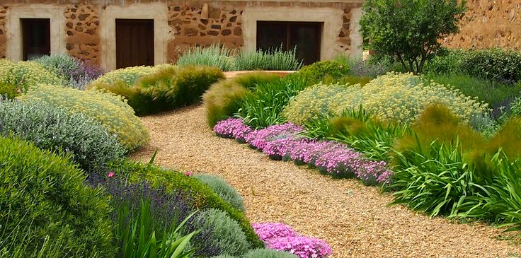 Jardin Toledo 2009: detalle plantación patio. Jardín mediterraneo, grava, jardín seco. Gravel garden, xeriscaping, dry garden, mediterranean garden. Spanish Courtyard http://www.flickr.com/photos/rudbekio/