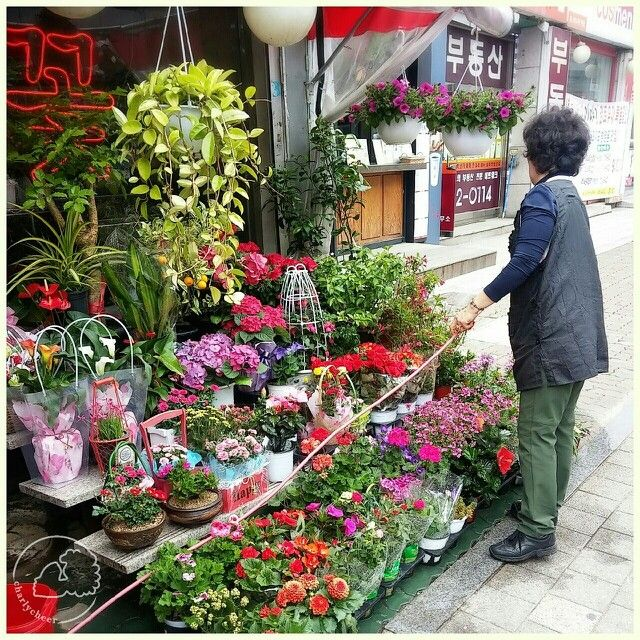 South Korean Flower Shop. Youtube: charlycheer