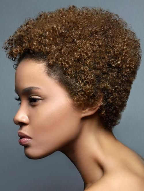 hair style for curly 17 best images about hair color on my hair 3204