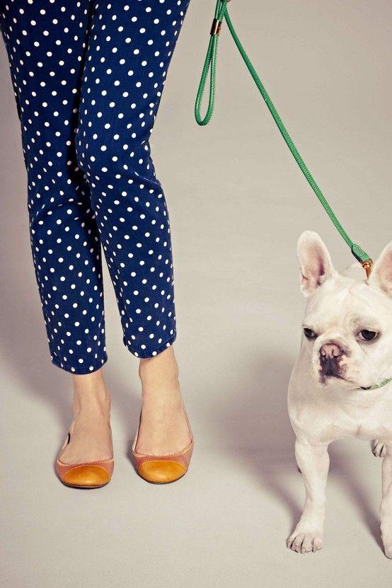 :: polka dots and an adorable pup...YES ::: Polka Dots, Fashion, French Bulldogs, Polka Dot Jeans, Polka Dot Pants, Style, Puppy, Frenchie, Polkadots