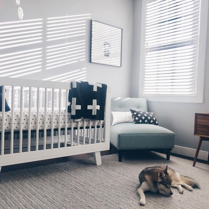 There's nothing quite like setting up a nursery, getting everything just right, then waiting for bub to arrive! 🐶  [Featuring: Babyletto Hudson Cot in White] _ #nurseryinspo #nurserydecor #cot #babycot #crib #babycrib #babysleep #baby #babylove #babygear #babystore #babyvillagestore #babyletto #babylettohudson 📷 @westofgeorgetown  | @babyletto | @ubabub