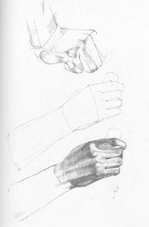 265 best Hands anatomy images on Pinterest | Drawing hands, Draw and ...