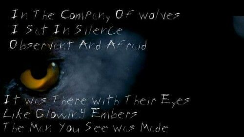 In the Company of Wolves - If not Now, When? (2011), Incubus