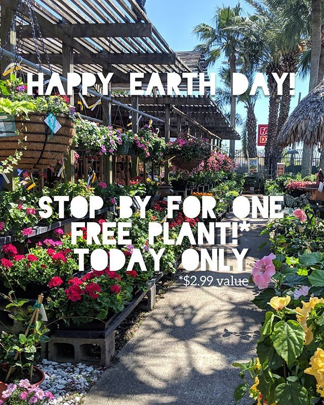 Happy Earth Day Galveston Celebrate This Special Day With Us By Visiting Tom S Thumb Nursery For A Free 2 99 Plant Pollinator Plants Plants Garden Care