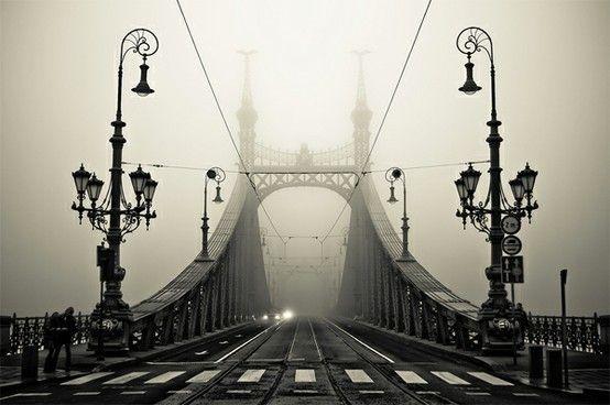 Bridges  #pretty