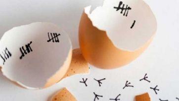 ¿Qué fue primero, el huevo o la gallina?